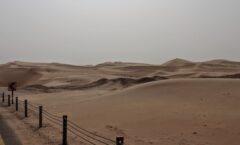 Bericht aus Abu Dhabi: Dubai – oder: Wo geht's hier nach Arabien?