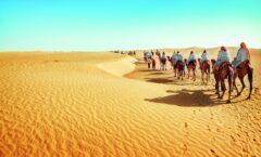 Mail aus Abu Dhabi: Ferienzeit im Wüstenstaat